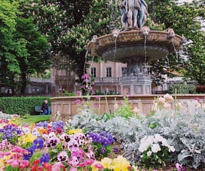flowers, fountain, and paris image