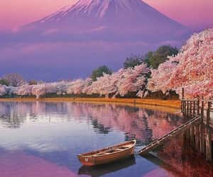 beautiful, scenery, and flowers image