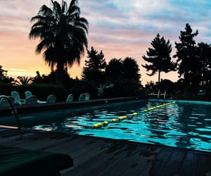 pool, summer, and trees image
