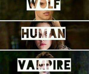human, vampire, and wolf image