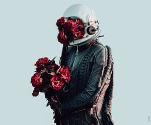 flowers, astronaut, and rose image