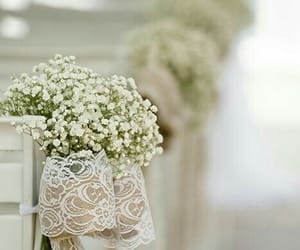 beautiful, flowers, and ideas image