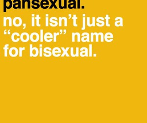 pansexual and pansexuality image