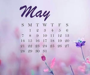 calendar, colors, and flowers image