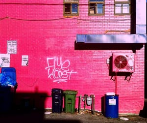 graffiti, pink, and street photography image