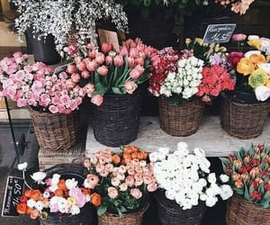 baskets, beautiful, and flowers image