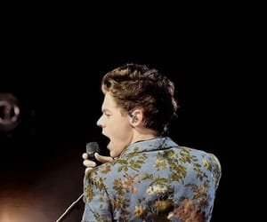 Harry Styles, styles, and harry image
