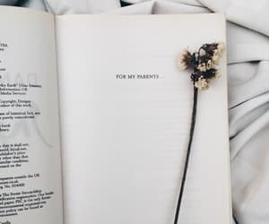 book, books, and flower image
