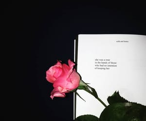flowers, pink, and poetry image
