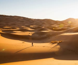 desert, love, and photography image