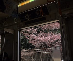 aesthetic, bus, and cherry blossoms image