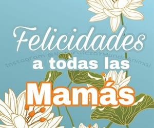 flores, madre, and frases image
