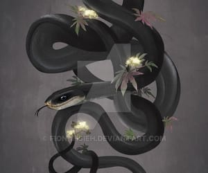digital art, snake, and black mamba image