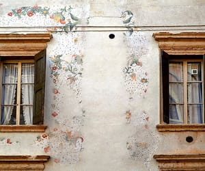 windows, aesthetic, and architecture image