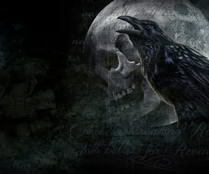 crow, Darkness, and goth image