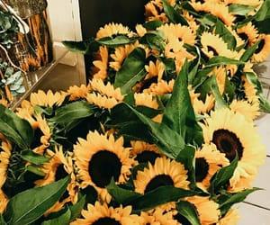 aesthetics, yellow, and beauty image