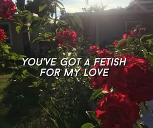 aesthetic, fetish, and Lyrics image