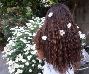 curly, girl, and longhair image