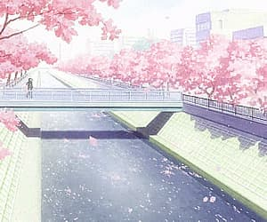 anime and gif image