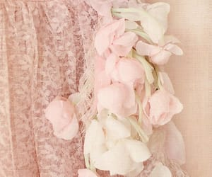 lace, pink, and rose image