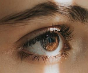 eyes, beautiful, and brown image