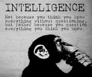 intelligence, quotes, and question image