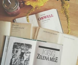 animal farm, books, and charles dickens image