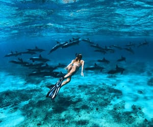 adventure, diving, and tropical image