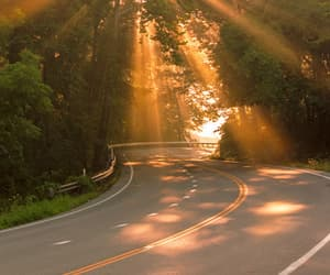 nature, sun, and road image