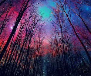 tree, galaxy, and stars image