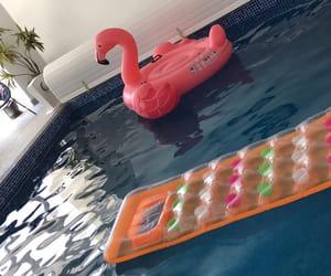 blue, flamingo, and pool image