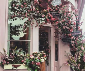 flowers, aesthetic, and psd image