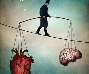 brain, heart, and human image