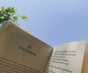 book, harry potter, and lovegood image