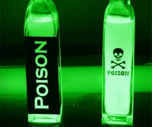 poison, aesthetic, and neon image