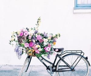bike, flower, and flowers image