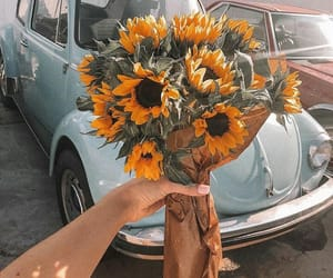 car, cute, and flower image
