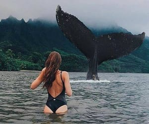 girl, nature, and whale image