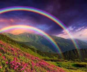 rainbow, flowers, and nature image