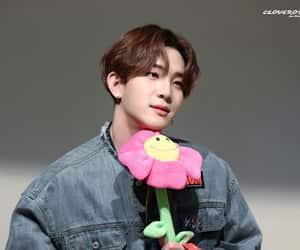 black rose, kpop, and Leo image