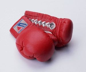 aesthetic, simple, and boxing image