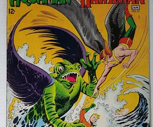 aquaman, hawkgirl, and comics image