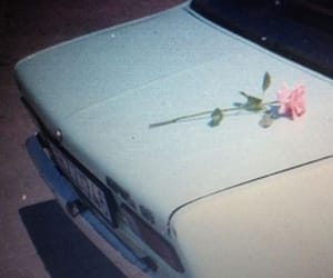 car, rose, and flowers image