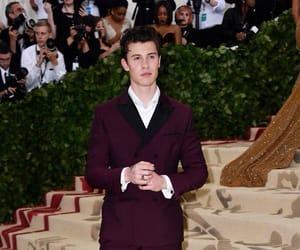 shawn mendes and met gala image