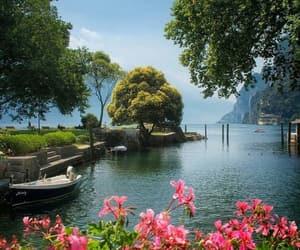 amazing, nature, and peaceful image