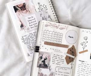 article, notebooks, and articles image