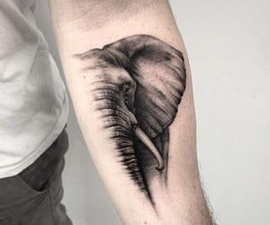 elephant, Tattoos, and tattoo image