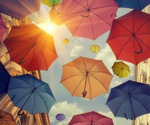 colorfull, colorido, and guarda-chuva image