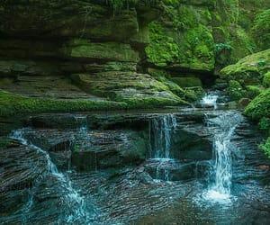 naturaleza, paisaje, and verde image