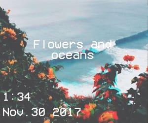 flowers, ocean, and polaroid image